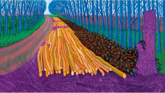 David Hockney The Cultural Exposé