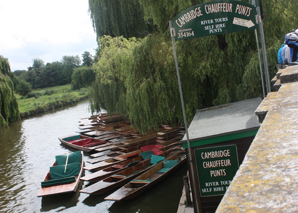 Punting in Cambridge - The Cultural Exposé